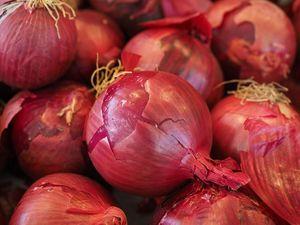 Κρεμμύδια Ξερά Κόκκινα Μέτρια Βοιωτίας 1 κιλό