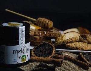 Μέλι Βελανιδιάς 450γρ