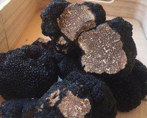 Μαύρη τρούφα Tuber mesentericum 100gr