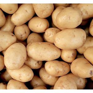 Πατάτες Μεσσαράς φρέσκες Κρήτης 1 κιλό