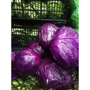 (Α)Λάχανο κόκκινο Ευβοίας 1 κιλό