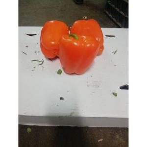 (Α)Πιπεριά πορτοκαλί Εισαγωγής 1 κιλό