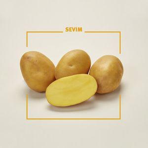 Ελληνικές Κίτρινες Πατάτες - Συσκευασία 3 κιλών