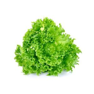 Λόλα πράσινη 1 τεμάχιο