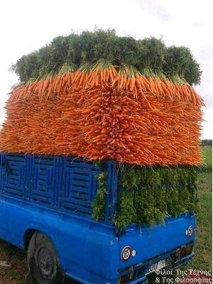 Καρότα 500gr