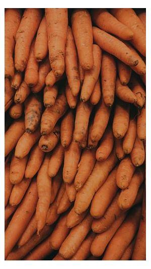 Καρότα Χοντρά Εύβοιας 1kg