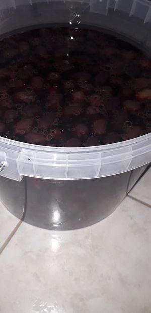 Ελιές Καλαμών Αιτωλοακαρνανίας σε ξύδι- συσκευασία 5 κιλών