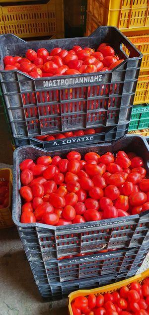 Ντομάτα ROMA 1 κιλό