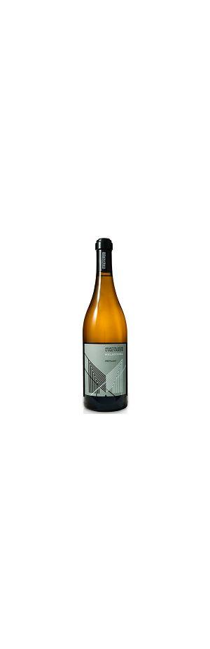 A) Anatolikos Vineyards Malagouzia Λευκός Βιολογικός 750ml (Χρονιά: 2020)