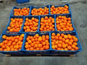 Mandarin orange 1kg - 800kg pallet
