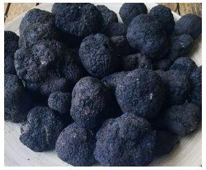 Black Truffle Tuber Uncinatum 50g