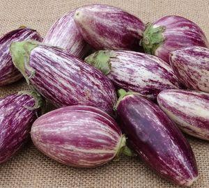 Greek Tsakonian Eggplant bio 1kg