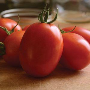 Small Tomato (Acorn shaped) BIO 1kg