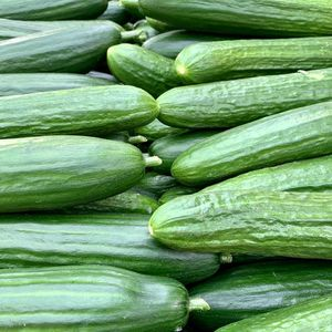 BIO Cucumbers from Knossos 1kg