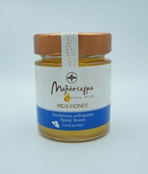 Honey from spring flowering 200g