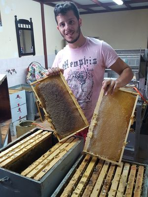 Thyme Honey 1kg