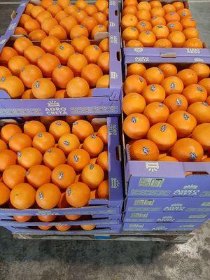 Cretan organic (BIO) oranges