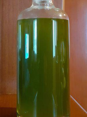 Extra virgin olive oil 5L (harvest 20-21)