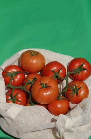 BIO Tomatoes bunch 1kg