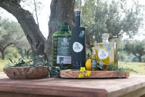 EXTRA VIRGIN OLIVE OIL 5L FROM ANCIENT OLYMPIA OF PELOPONNESE AREA- 40 ITEMS