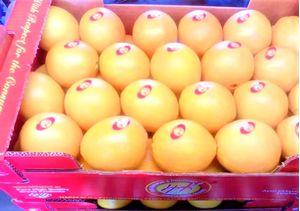 Navalines Oranges pallet 700 kg