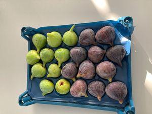 Fresh fig 1kg