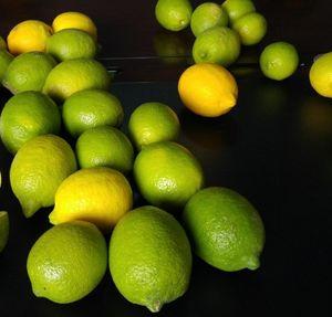 Lemon Adalia