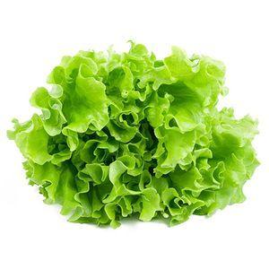 Lettuce Curly Organic 1kg
