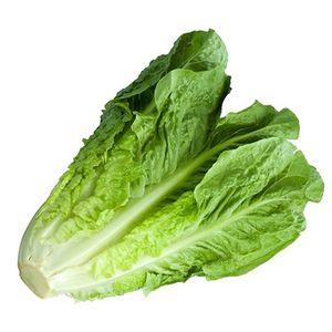 Lettuce Organic 1kg