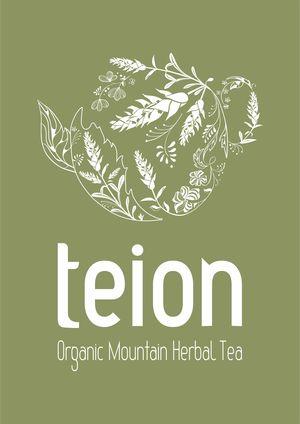 Teion