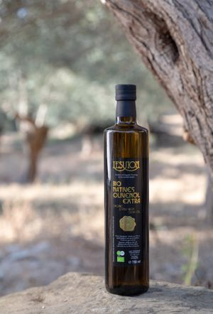Organic Extra Virgin Olive Oil - 750 ml