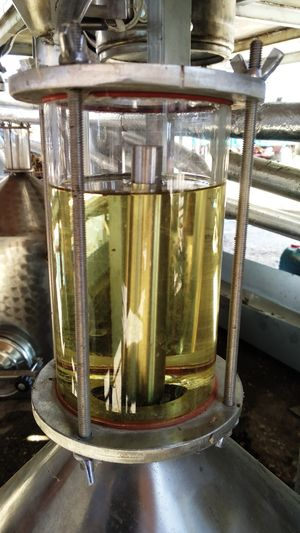 Essential oil Lavender 1000ml
