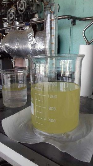 Essential oil Oregano 1000ml