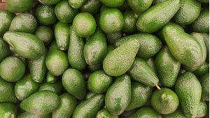 Αβοκάντο Περού 1kg