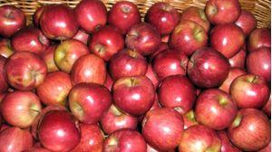 (Α)Μήλα στάρκιν Αγιάς Χύμα Β ΠΟΙΟΤΗΤΑΣ 1 κιλό