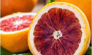 Πορτοκάλια Σαγκουίνι (Ρόκο) Αργολίδος