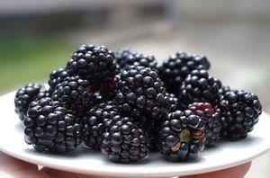 Βατόμουρα (Blackberries) τεμ. 125-150g
