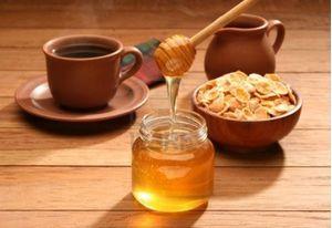Μέλι Ελάτου 1kg