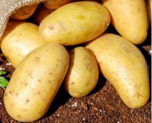 Πατάτα-Χαλκίδας 1kg