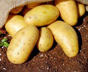 Πατάτα εισαγωγής bio 1κιλό