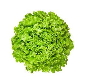 (Α)Λόλα πράσινη Κάλαμος  1 τεμάχιο