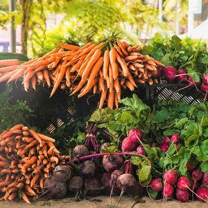 Καρότα με φύλλα σε ματσάκι 1 κιλού