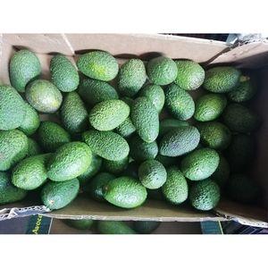 (Α)Αβοκάντο Κρήτης πράσινο 1 κιλό