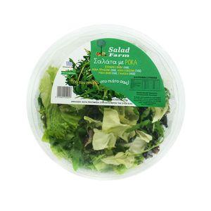 Σαλάτα με ρόκα Salad Farm  Ελληνική 130 γρ (Σπανάκι baby,λόλα πράσινη,λόλα κόκκινη,ρόκα baby,γαλλική σαλάτα) Κομμένη & Πλυμμένη 3 τμχ ΠΡΟΣΦΟΡΑ (1.53€/τμχ)