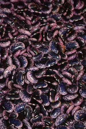 Μαύροι Γίγαντες Καστοριάς 1kg
