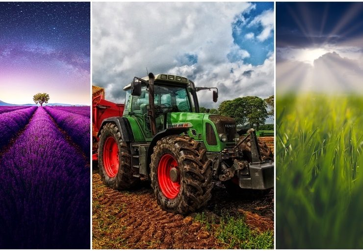 Farming 101 - Farming for Beginners - Agriculture for Beginners