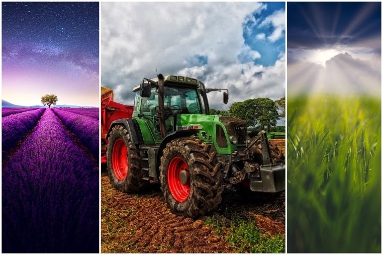 andwirtschaft lernen – landwirt werden ohne ausbildung